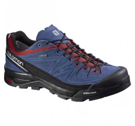 Salomon X Alp LTR GTX Shoe - Men's